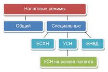 Специальные режимы налогообложения - УСН и ЕНВД